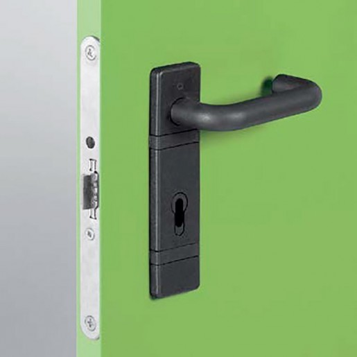Handle detail on the standard multipurpose door